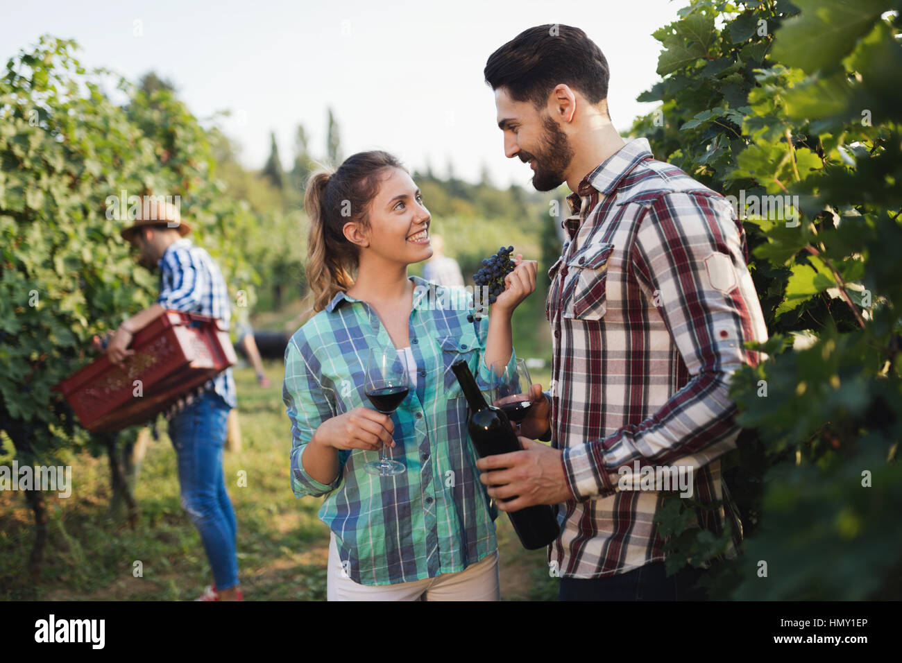 Happy winegrower family in vineyard before harvesting - Stock Image