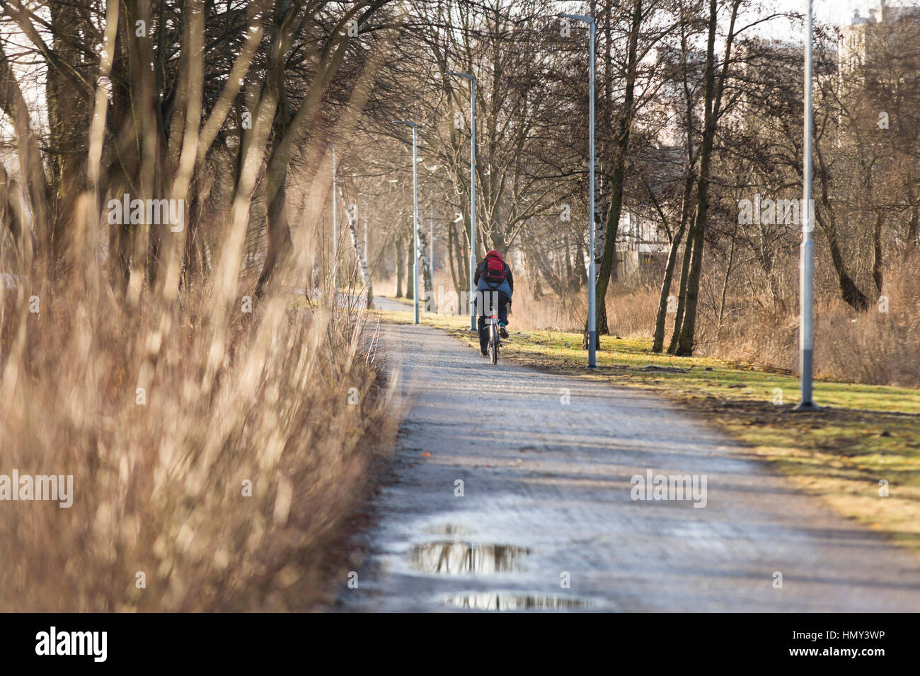 Rear view of person bicycling on gravel bicycle path - Stock Image