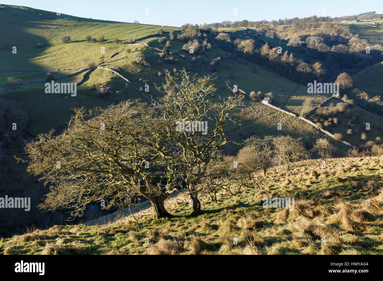 Dovedale, near Milldale, Peak District National Park, Staffordshire Stock Photo