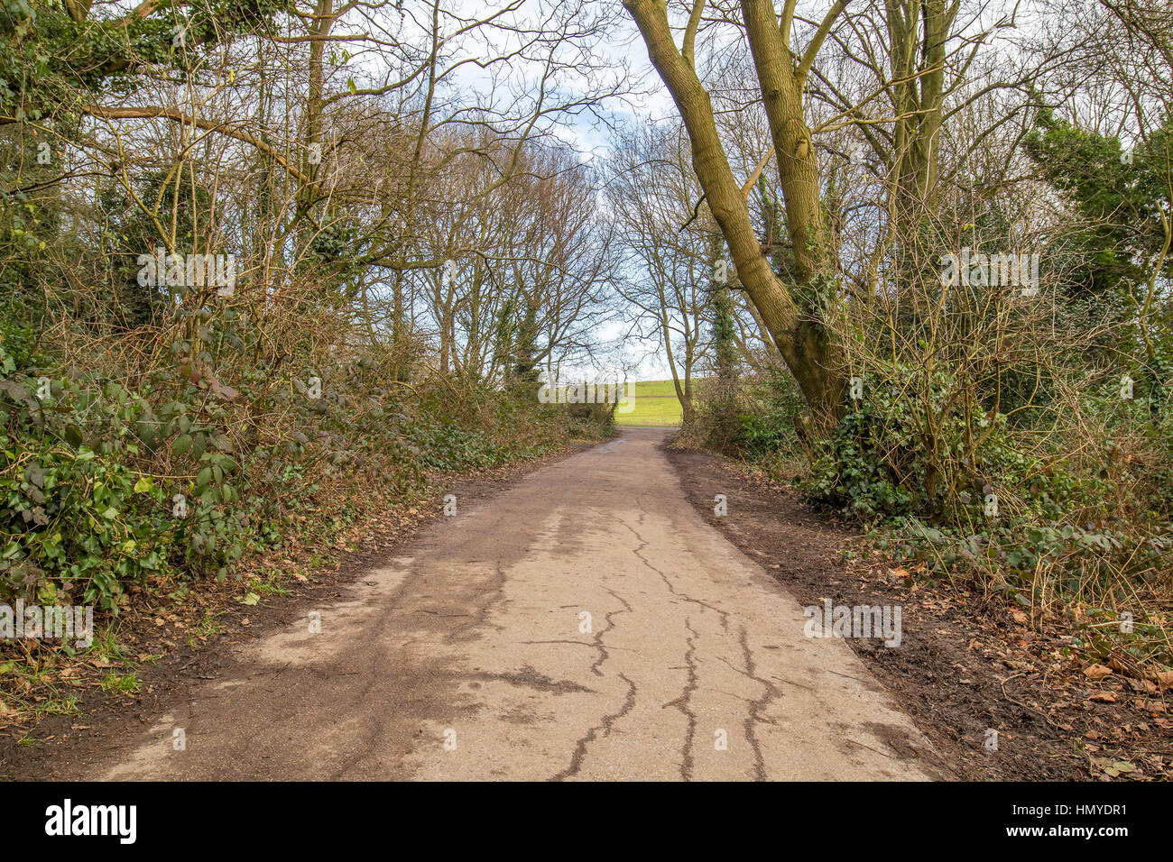 old walking path made of tar in a British park during a claudy day Stock Photo