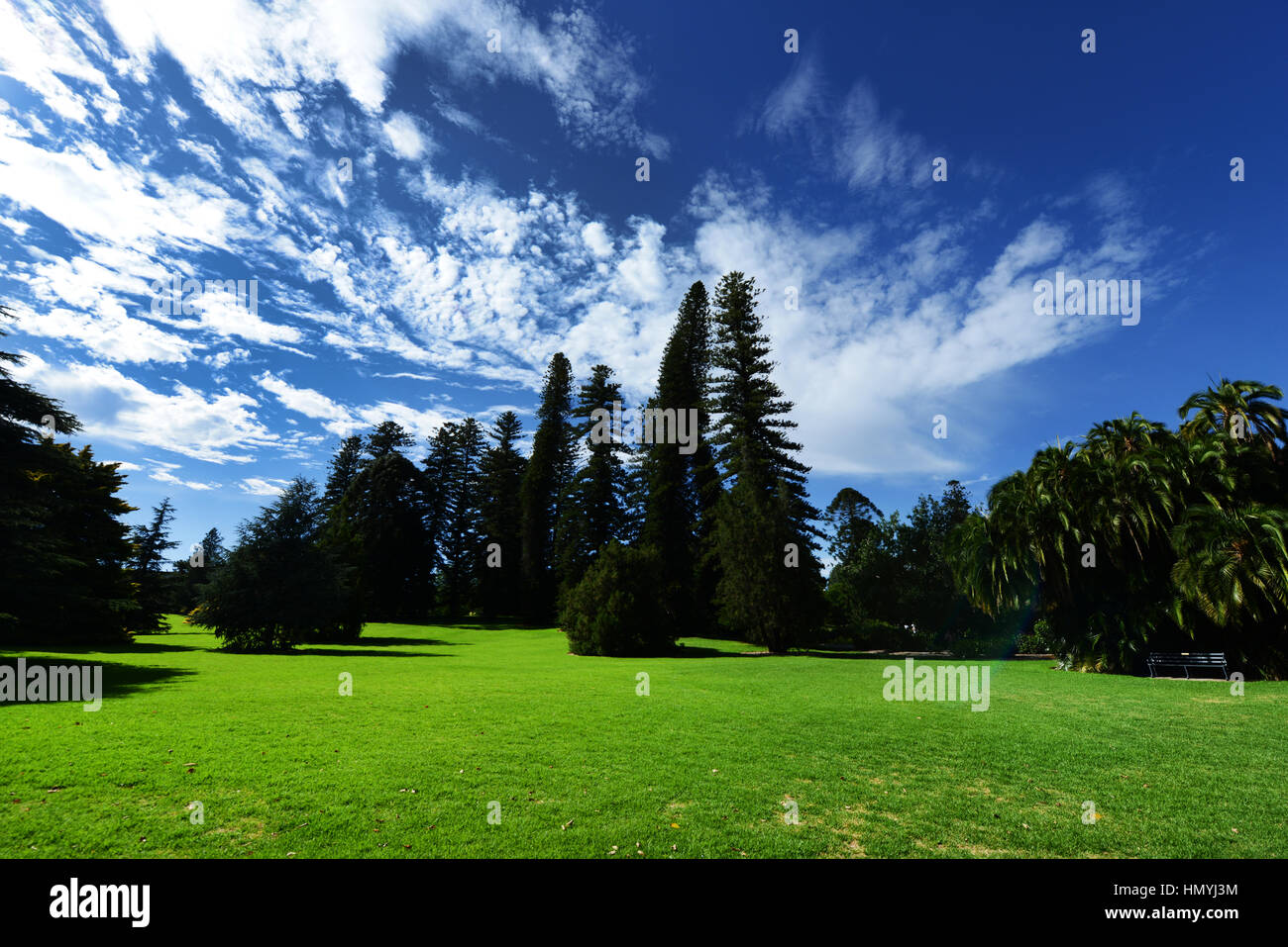 Adelaide's Botanic park has big open space which is used or performances during the annual Adelaide festival. - Stock Image