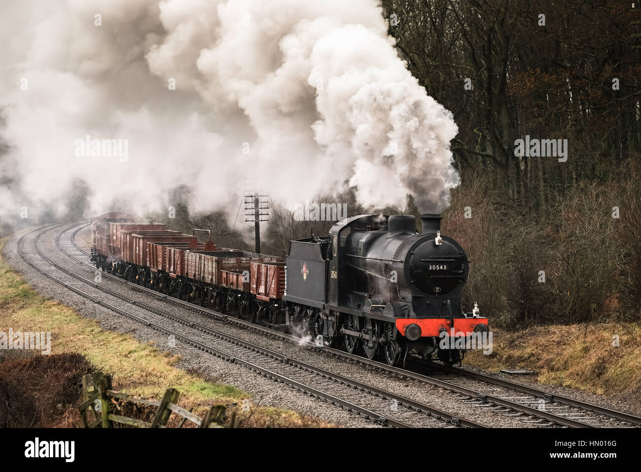 Southern Q Class 0-6-0 No. 30543 approaching Kinchley Lane and Swithland Viaduct on the Great Central Railway, February - Stock Image