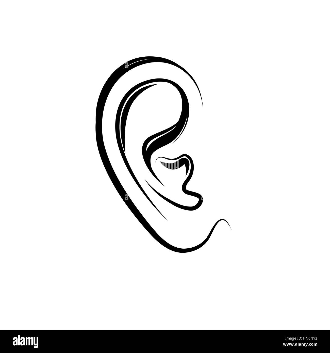 Ear engraving illustration. Human ear isolated over white background - Stock Image