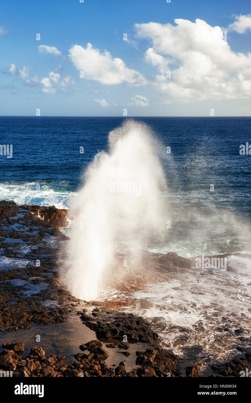 The Pacific Ocean shoots out of the Spouting Horn along the South Shore on Hawaii's Island of Kauai. - Stock Image