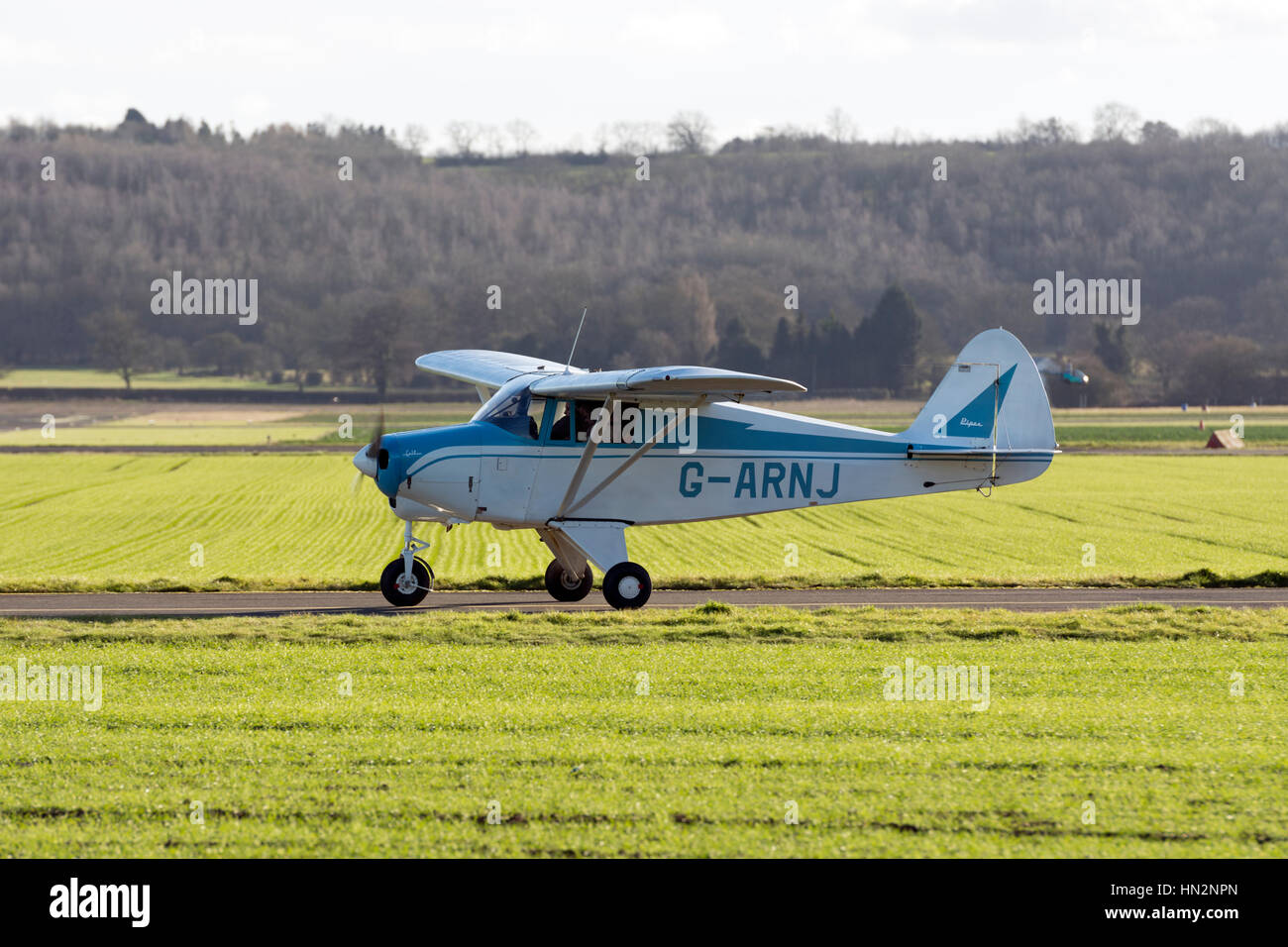 Piper Colt Stock Photos & Piper Colt Stock Images - Alamy