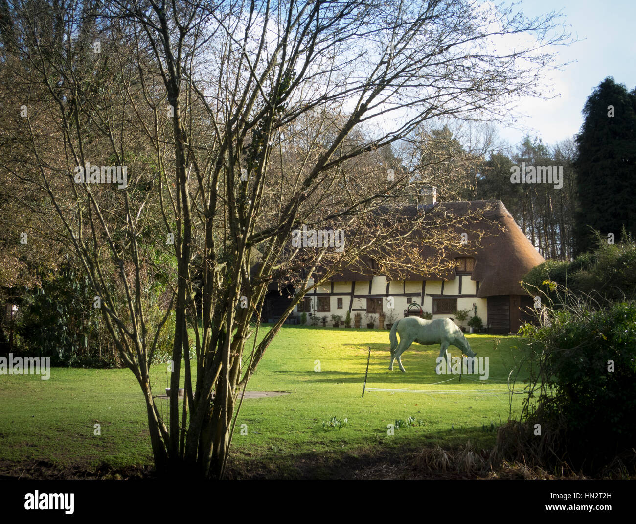 Country House with thatched roof Stock Photo