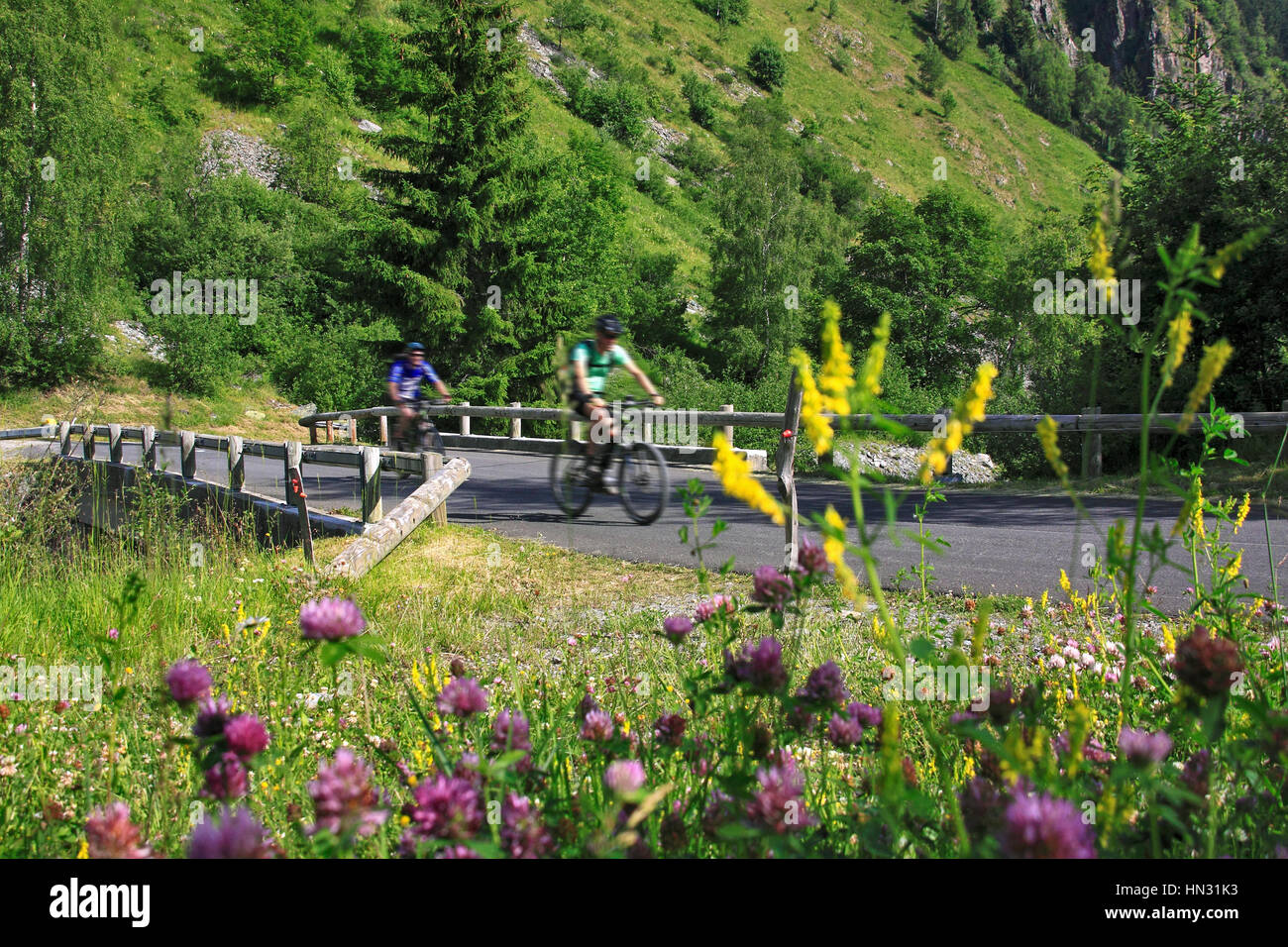 Two mountain bikers climbing mountain pass above the Maurienne Valley, Savoie region, French Alps, France - Stock Image
