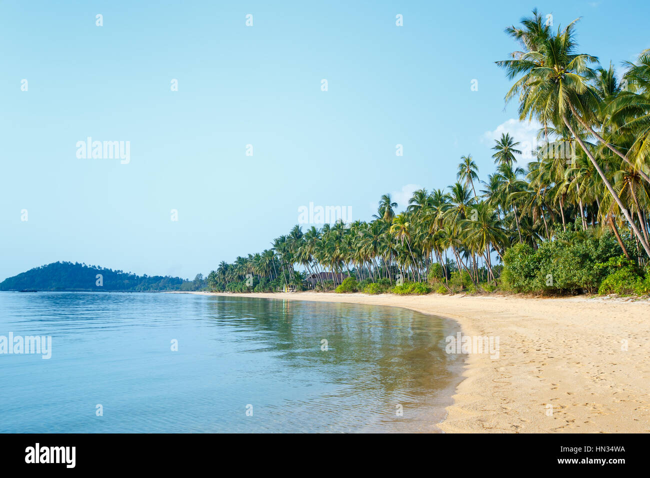 Tropical beach and coconut palms in Koh Samui, Thailand, Asia - Stock Image
