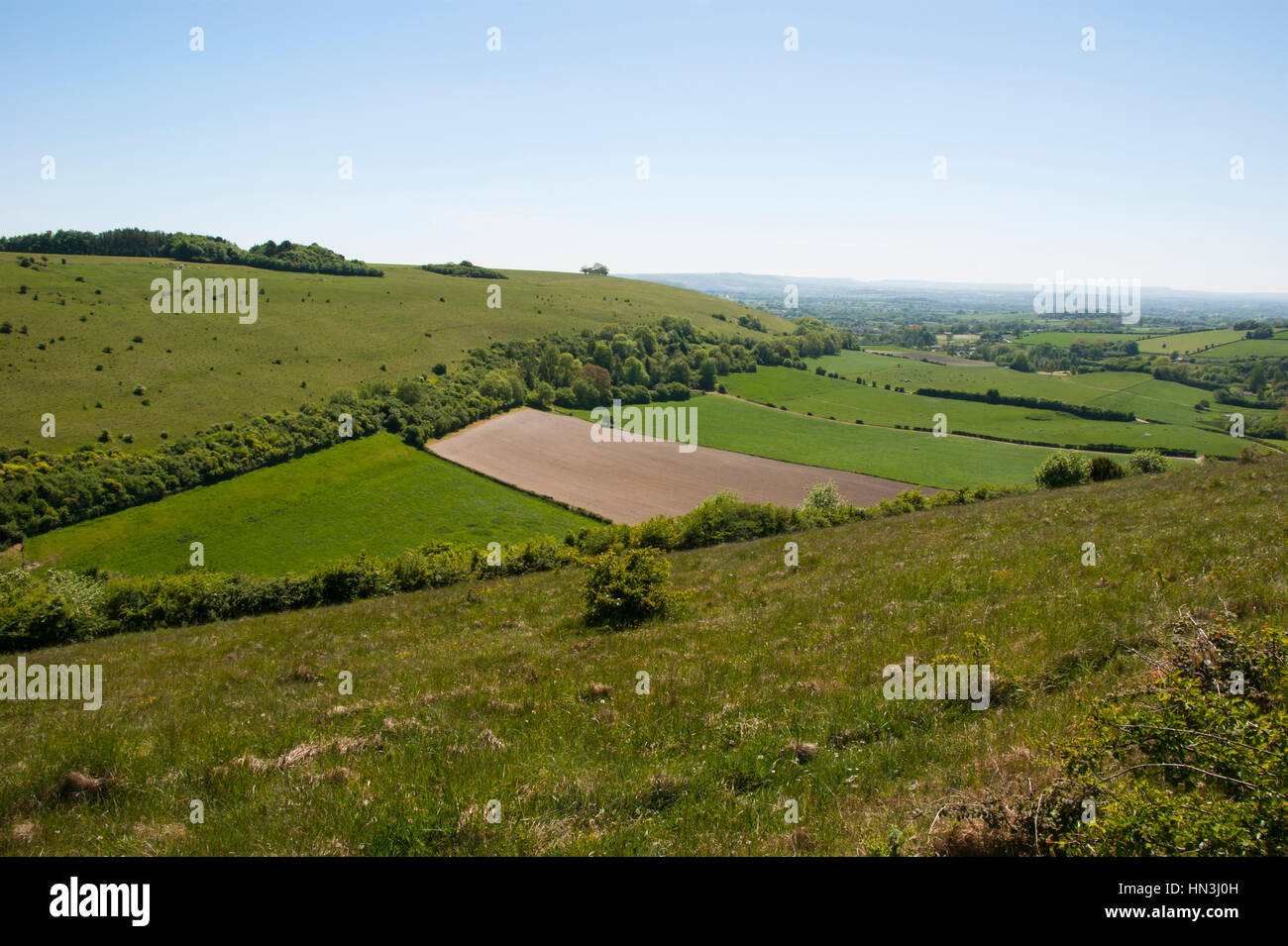 Chalk downland landscape with grassland hills and farmed fields in central valley - Stock Image