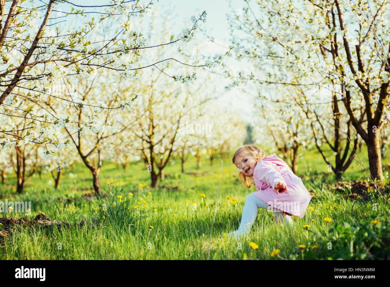 child running outdoors blossom trees. Art processing and retouch - Stock Image