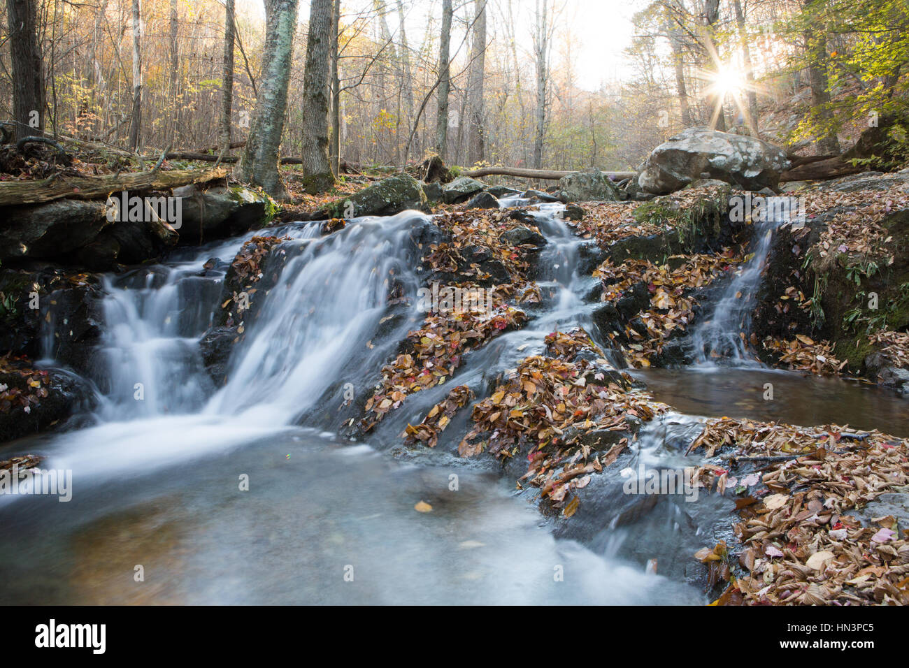 The sun bursts through colorful autumn foliage and a waterfall meanders around rocks along Dark Hollow Falls Hiking - Stock Image