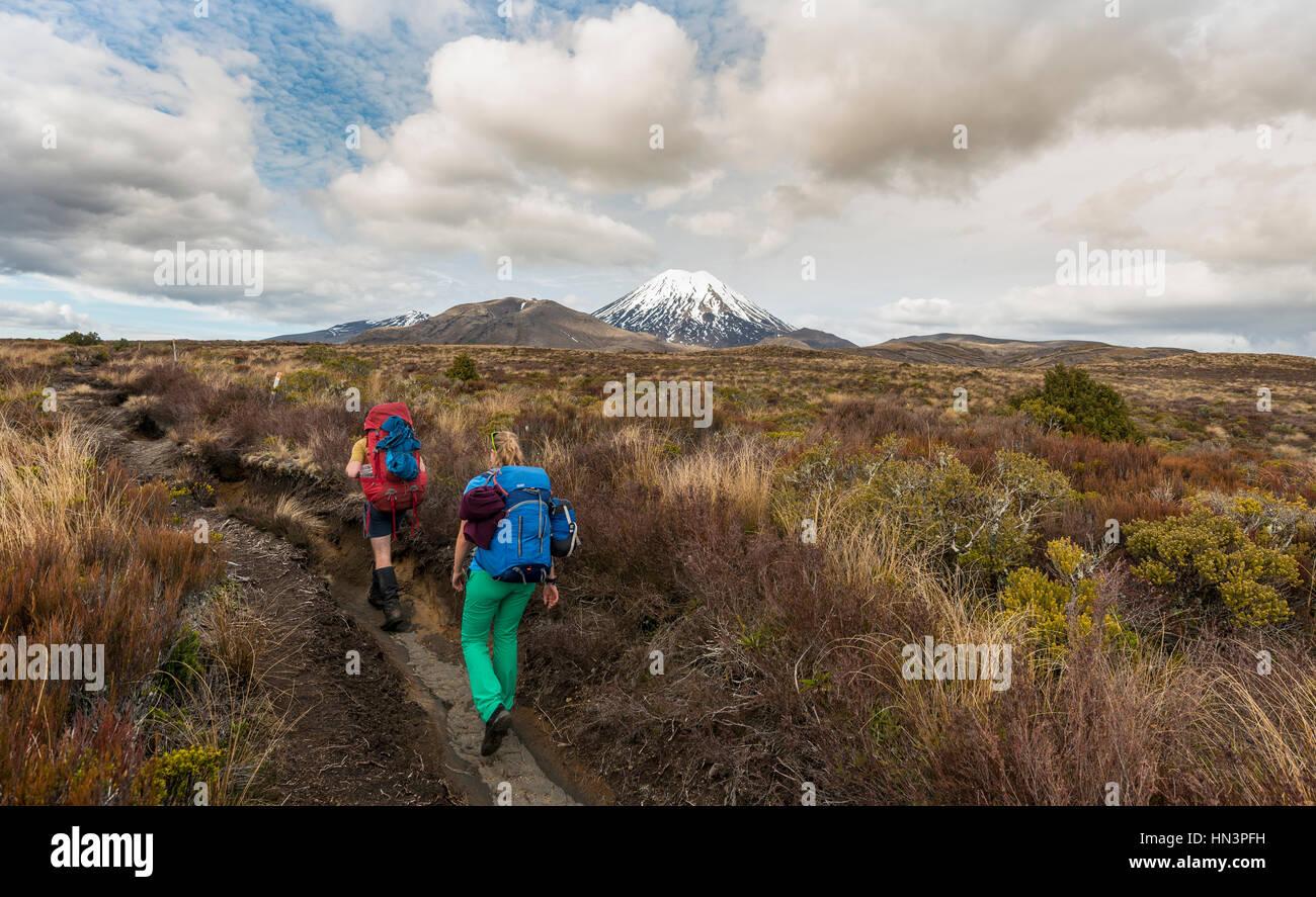 Hikers, volcano, Mount Tongariro and Mount Ngauruhoe, Tongariro National Park, Southland, New Zealand - Stock Image