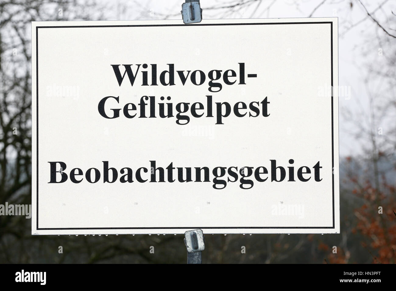 Warning sign bird flu, avian influenza surveillance area, Pinneberg, Schleswig-Holstein, Germany - Stock Image