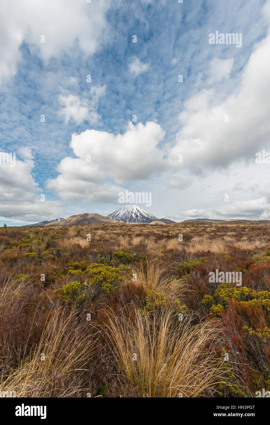 Volcano Mount Tongariro and Mount Ngauruhoe, Tongariro National Park, Southland, New Zealand - Stock Image