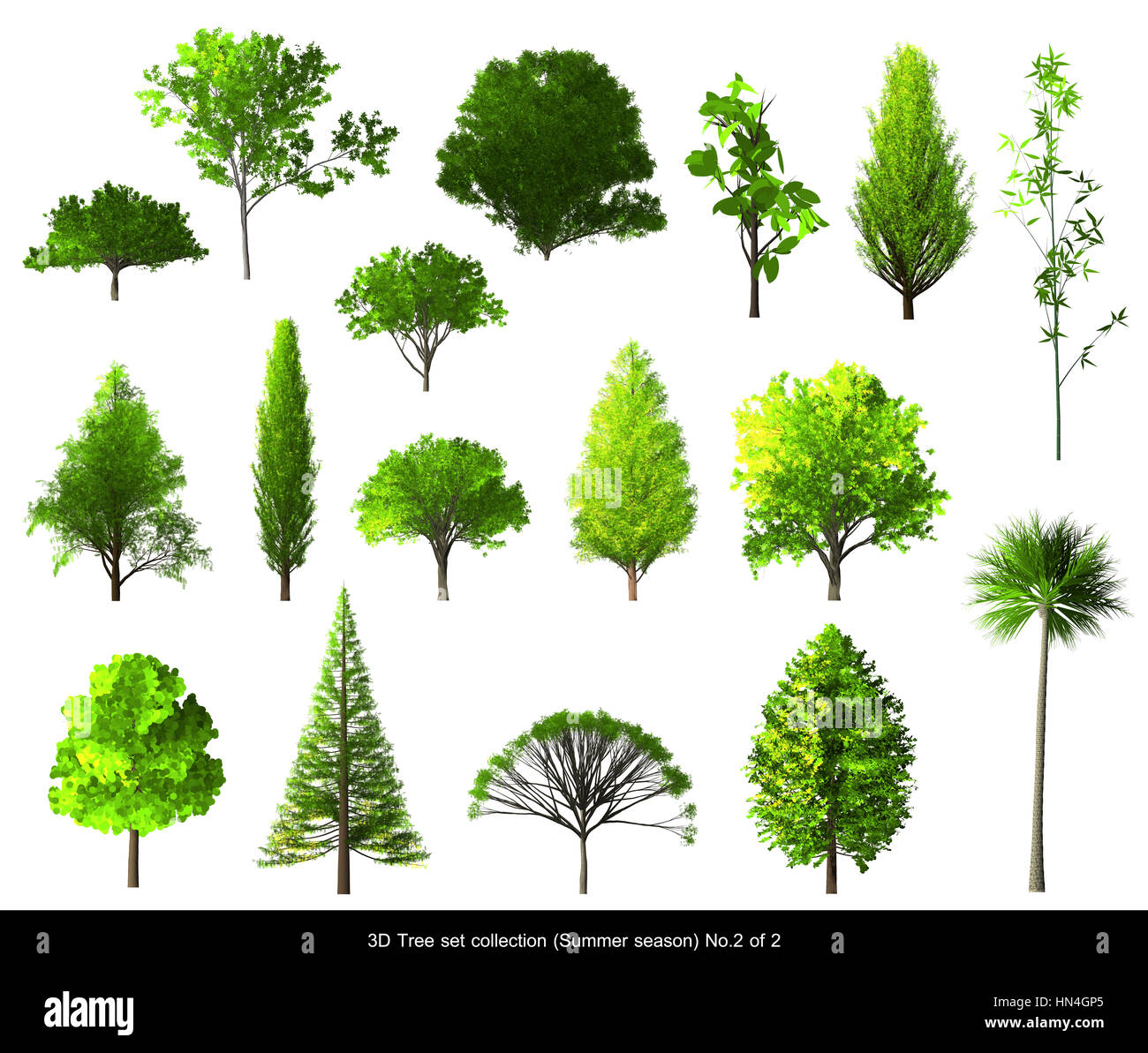 Green Leaf Tree Summer Season Set For Architecture Landscape Design, 3D  Tree Isolated On White