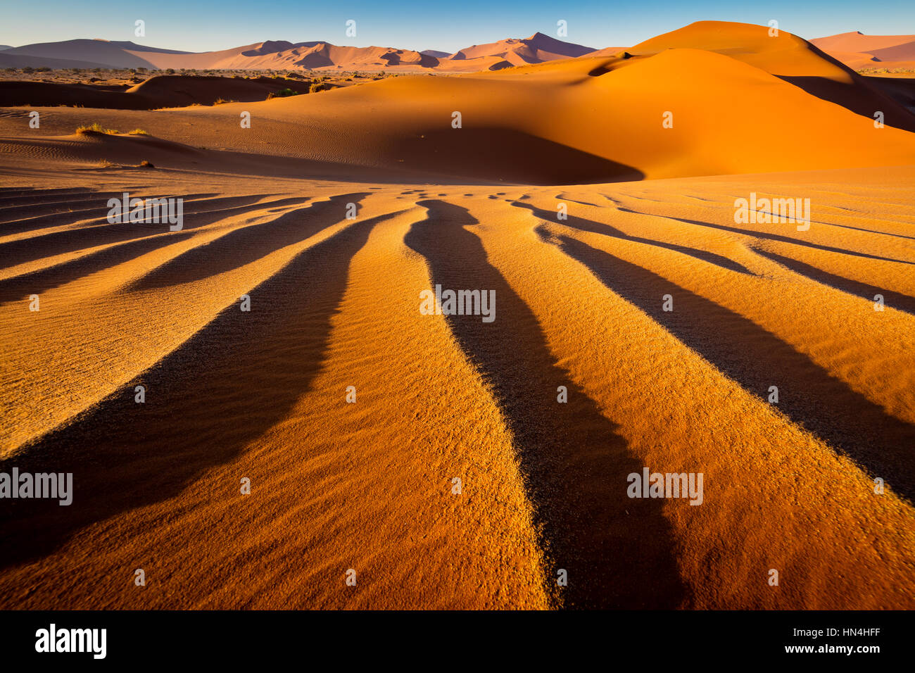 Sossusvlei is a salt and clay pan surrounded by high red dunes, located in the southern part of the Namib Desert, - Stock Image