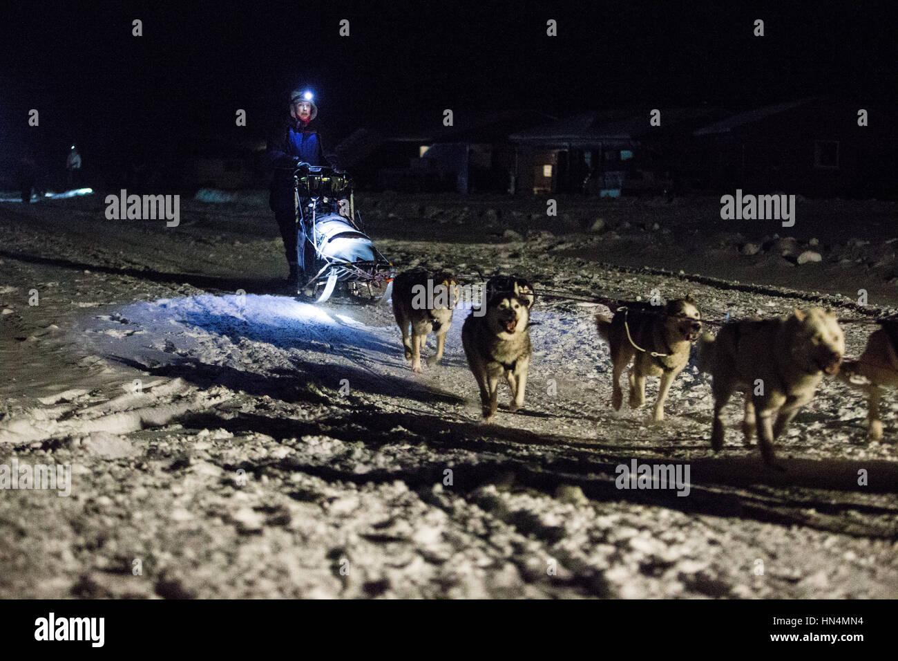 A musher at the start of the 150 Class Race - Nyborgmoen, NORWAY, February 3. 2017 - Bergebyløpet N70 ©Samuel - Stock Image