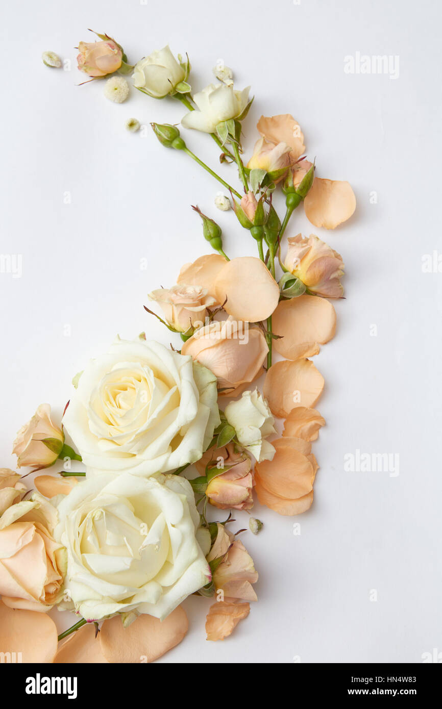 Composition Of White And Orange Roses Represented On White Stock