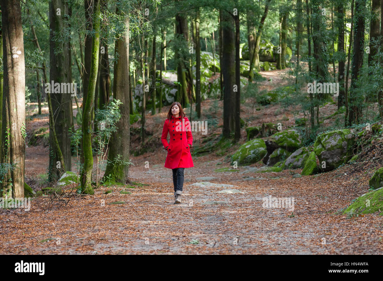 Young woman walking alone on a forest dirt path wearing a red overcoat on a cold winter day/ woman walking alone - Stock Image