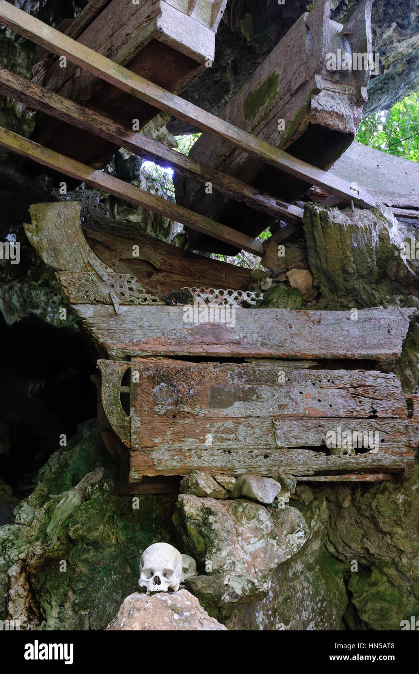 Tana Toraja - Ancient cave tomb. The cave is guarded by a balcony of tau tau. Inside the cave is a colection of - Stock Image