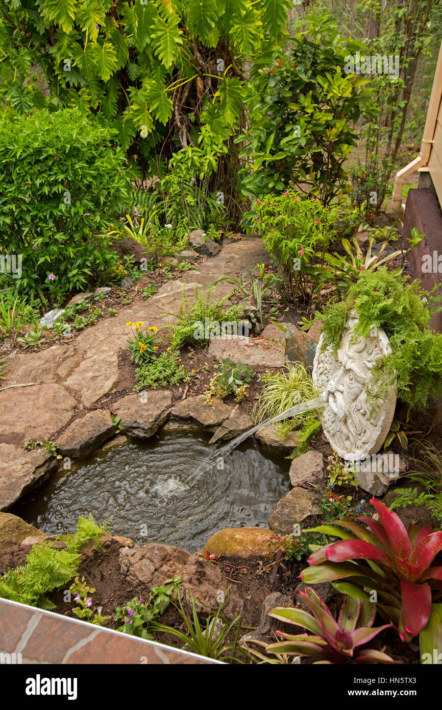 Pond with large sculptured stone face spurting water into pool surrounded by rockery with colourful bromeliads, - Stock Image