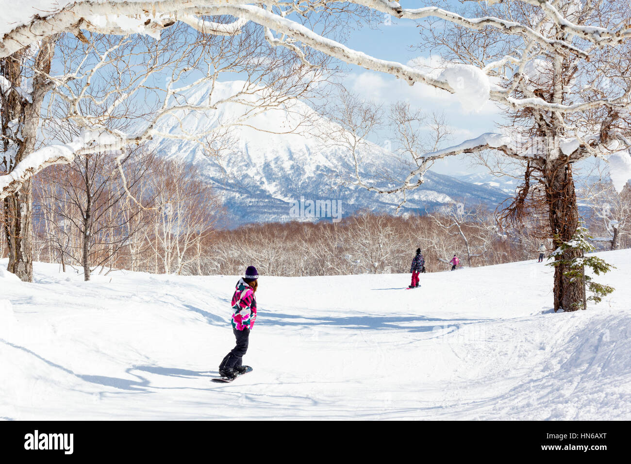 NISEKO, JAPAN - MARCH 10 : General view of people snowboarding on a tree-lined piste in the Niseko Grand Hirafu - Stock Image