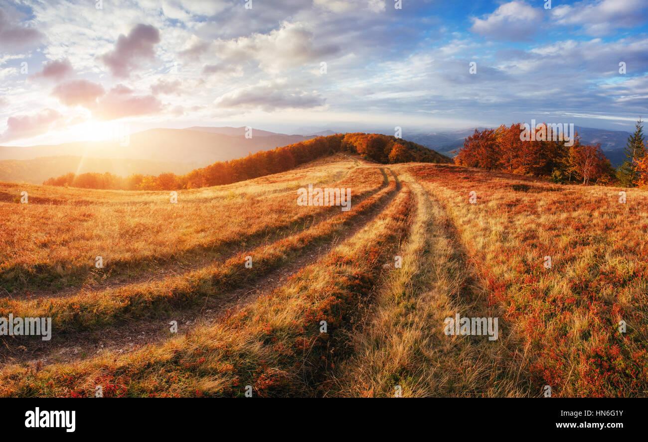 rock massif in the Carpathians. - Stock Image