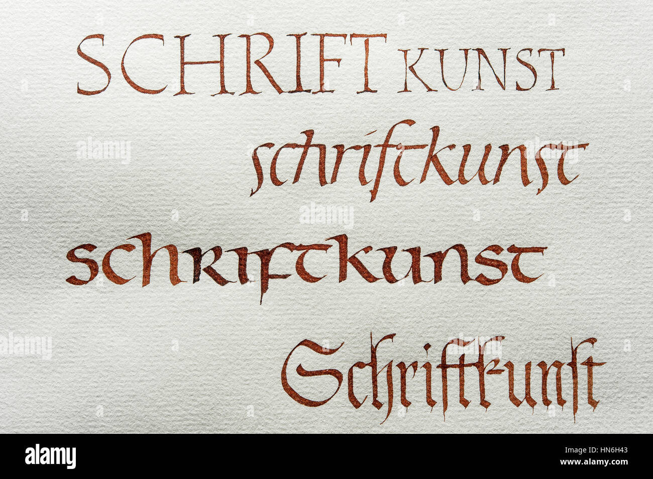 Calligraphy Studio Fonts Roman Capital Font Italics Insular Minuscule Gothic Script On Ingres Paper Seebruck