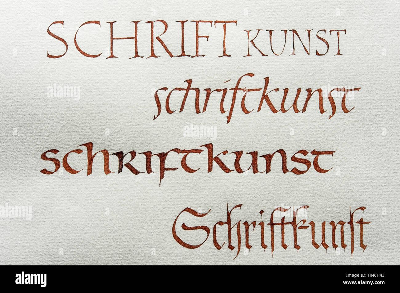 Calligraphy Studio Fonts Roman Capital Font Italics Insular Minuscule Gothic Script On Ingres Paper Seebruck