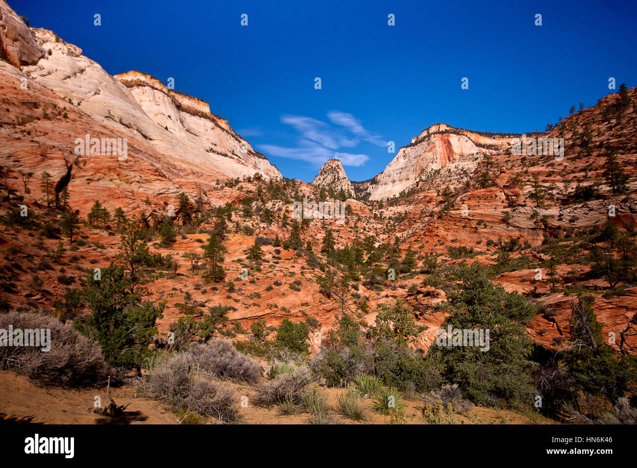 Red Rock Mountains in Zion National Park, Springville, Utah, USA - Stock Image