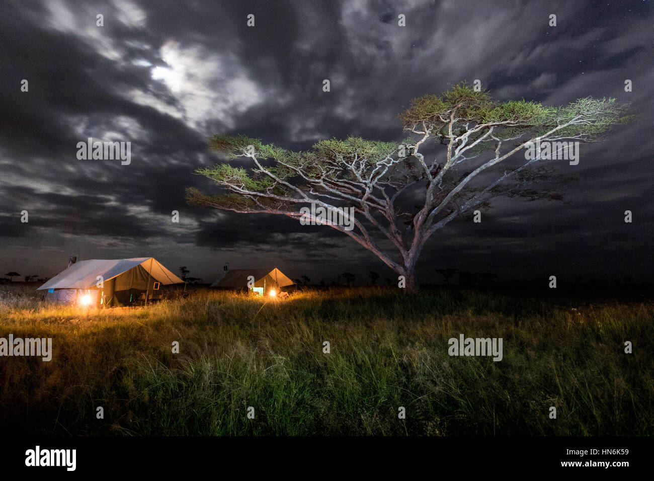 Nightscape landscape photo of camping in the Serengeti National Park, Tanzania, Africa - Stock Image