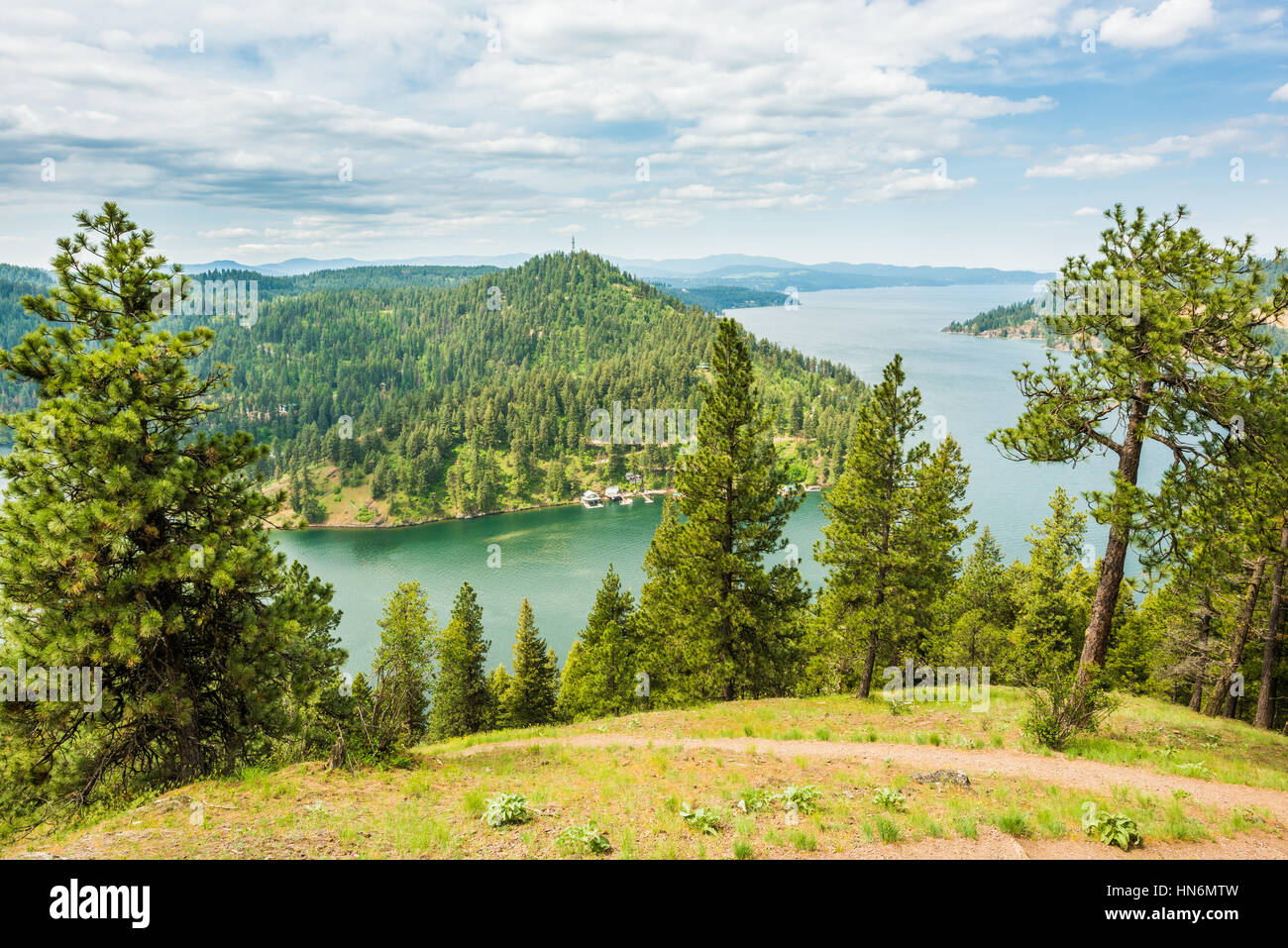 View of Coeur d'Alene lake from mountains with pine trees in Idaho from Mineral Ridge trail - Stock Image