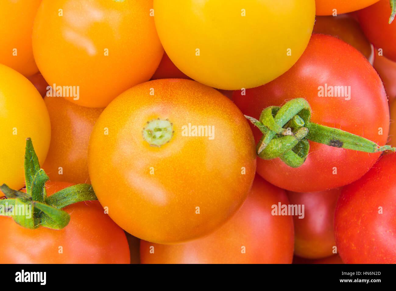 Closeup of red yellow and orange cherry tomatoes Stock Photo