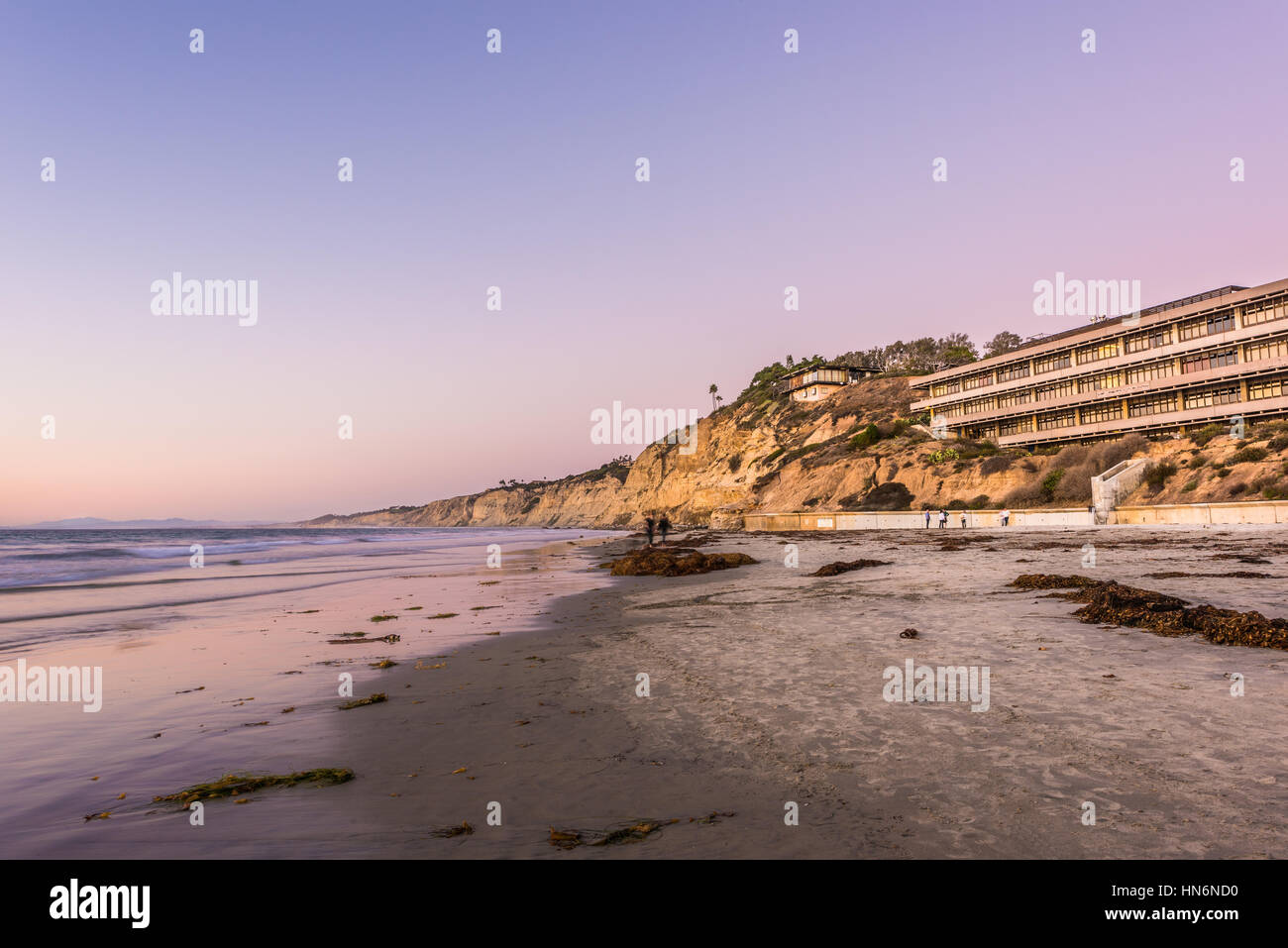 La Jolla, USA - November 7, 2015: Purple sunset on beach with Hubbs Hall at Scripps Institute of Oceanography in - Stock Image