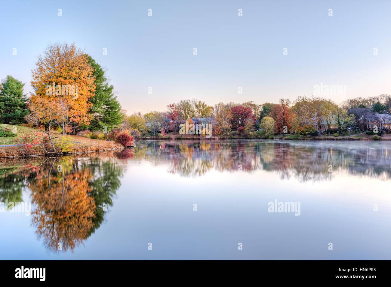 Sunrise on Braddock lake in Burke, Virginia, USA with reflection in autumn and orange tree - Stock Image