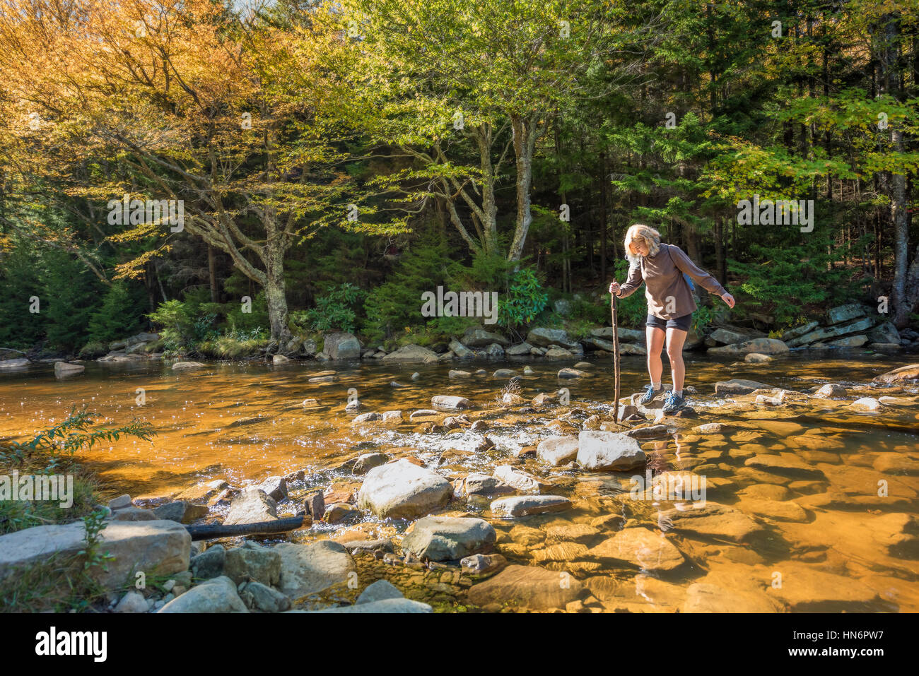 Young woman with stick crossing Red Creek river in Dolly Sods, West Virginia - Stock Image