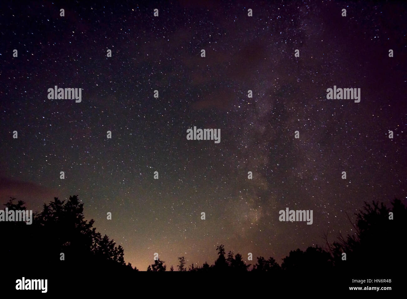 Night sky with the milky way, stars and tree silhouettes - Stock Image