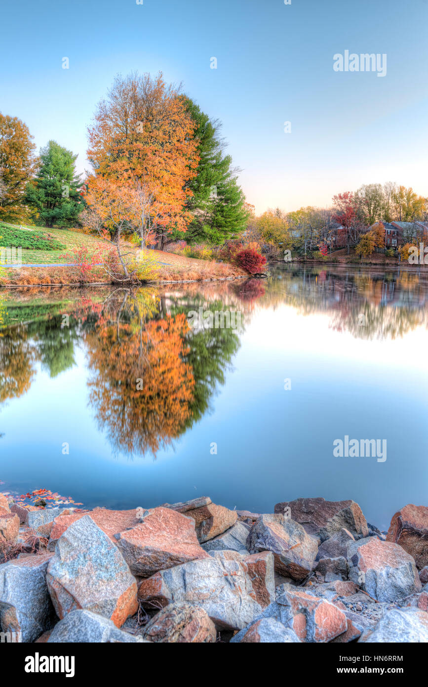 Sunrise on Braddock lake in Burke, Virginia, USA with vertical reflection in autumn and orange tree - Stock Image