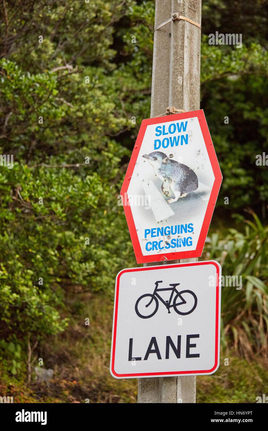Penguins Crossing sign, Wellington, New Zealand - Stock Image
