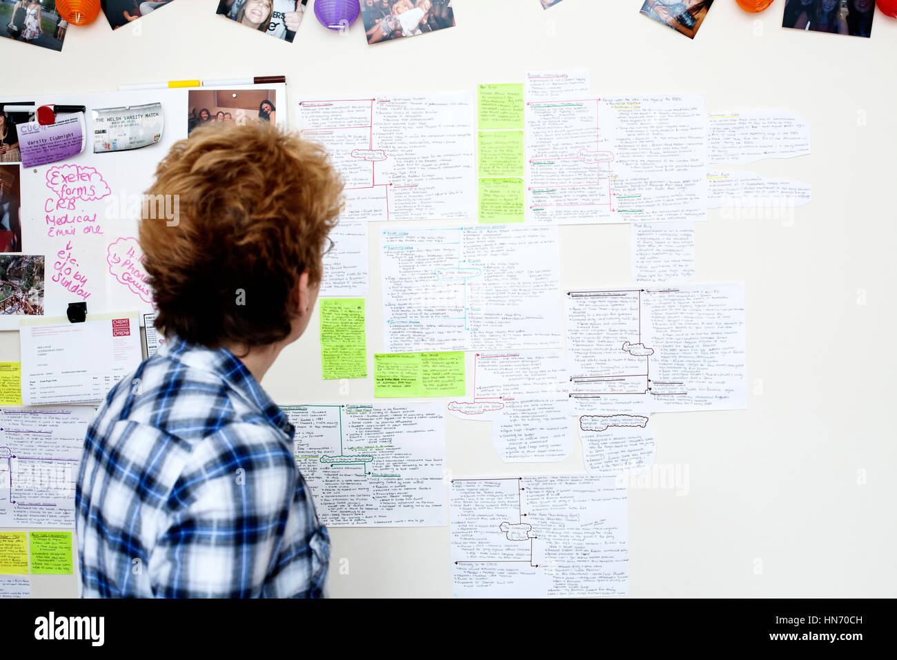 A students revision board in student accommodation covered in revision notes for forthcoming degree examinations - Stock Image