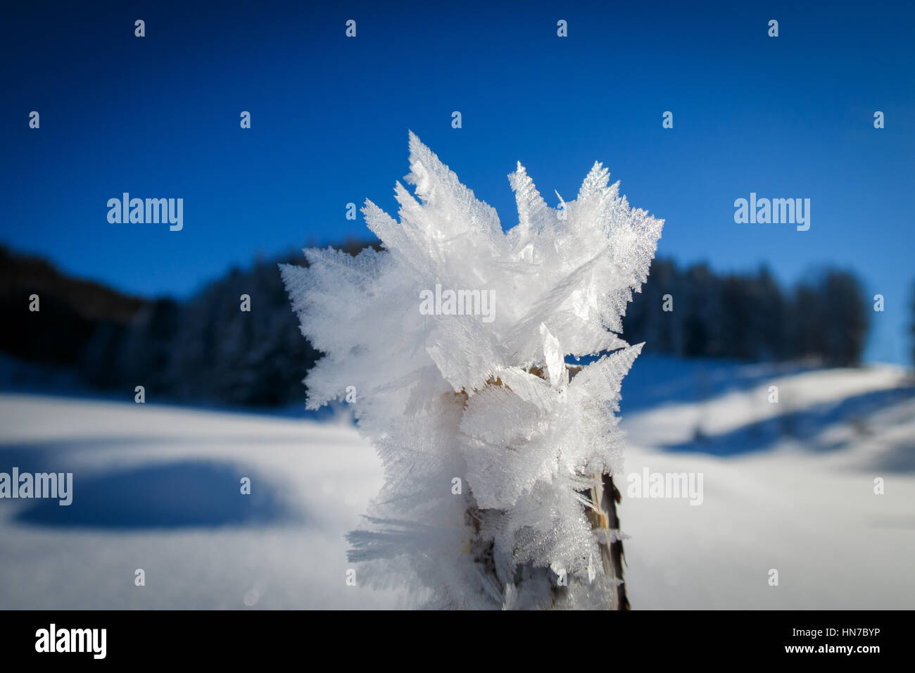 Ice Crystals Makro - Stock Image