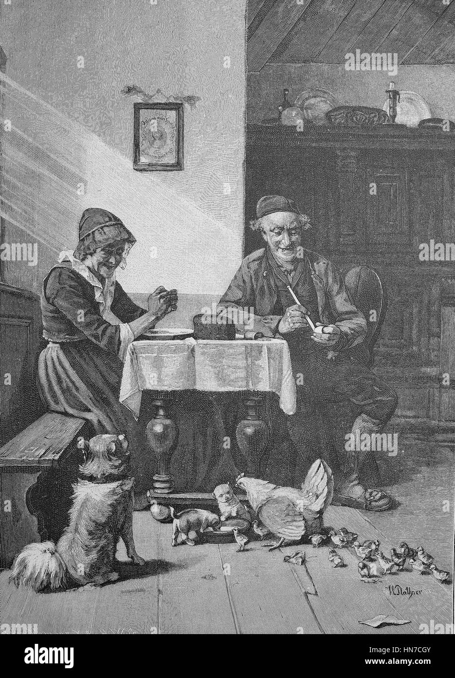 Feeding, in the living-room of a farm, with dog, dog-puppies, chickens and chicks at feeding, Fuetterung, in der - Stock Image