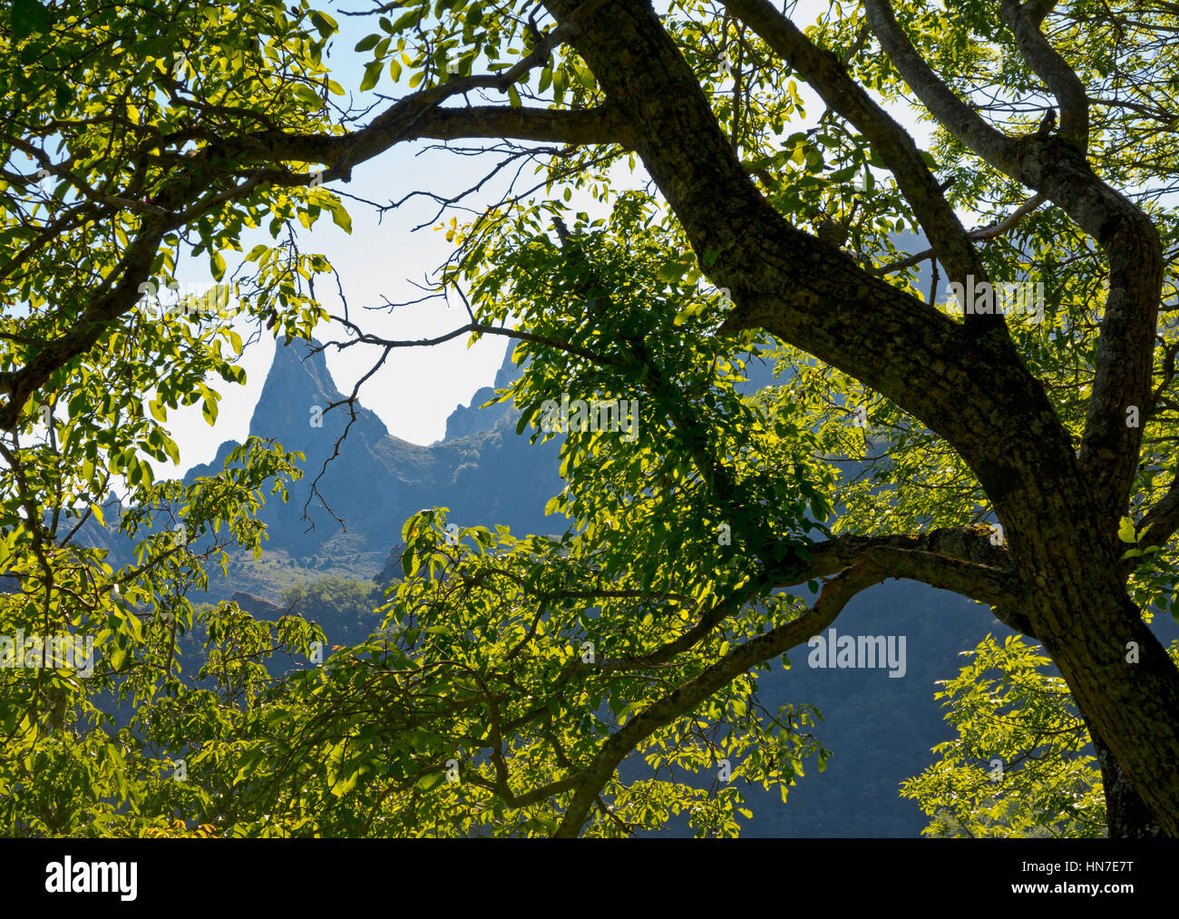 Landscape near Cucayo a mountain village in the Picos de Europa National Park in Cantabria northern Spain - Stock Image
