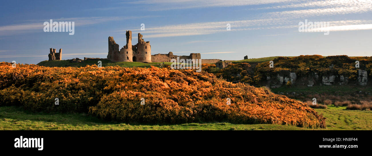 Summer blue skies, Dunstanburgh Castle, North Northumbrian Coast, Northumbria County, England, UK - Stock Image