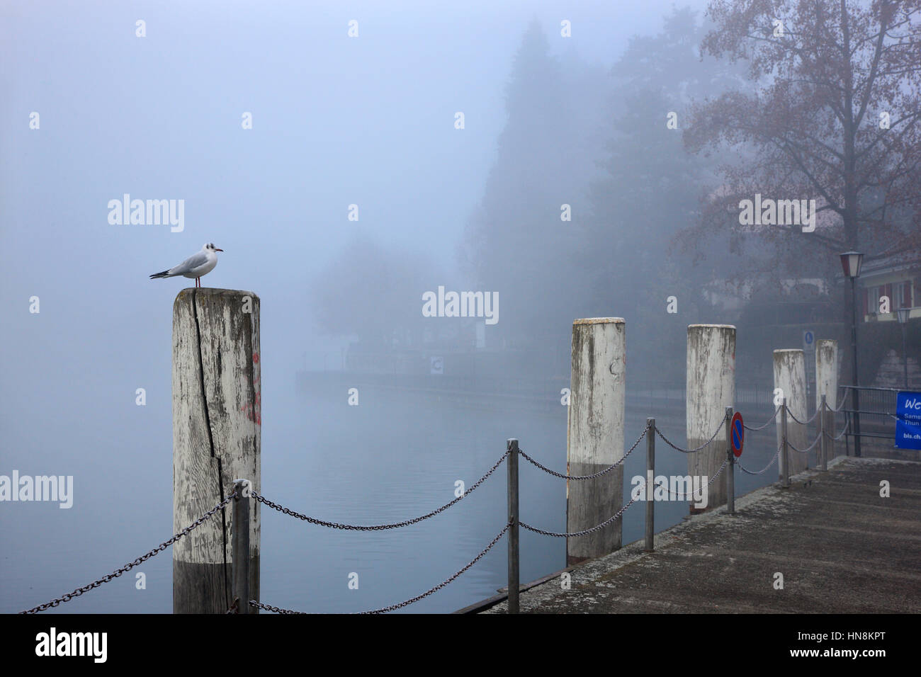 Dock by river Aare, Thun town, Bernese Oberland, Switzerland - Stock Image