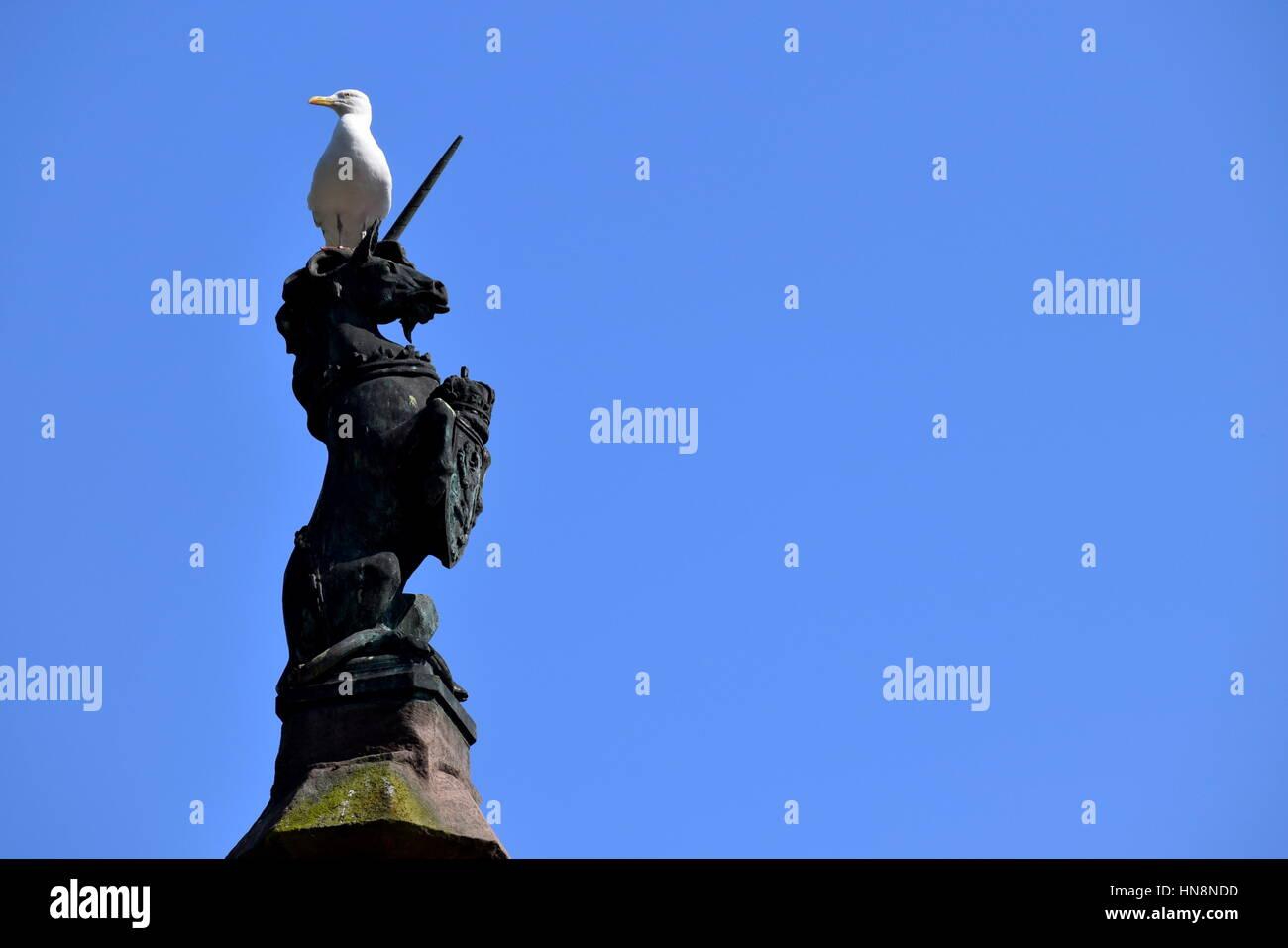 Unicorn Statue Mercat Cross, Dundee, Scotland - Stock Image