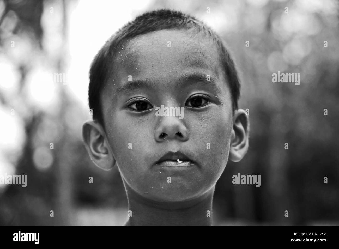 Boy is watching the Photographer while shooting - Stock Image