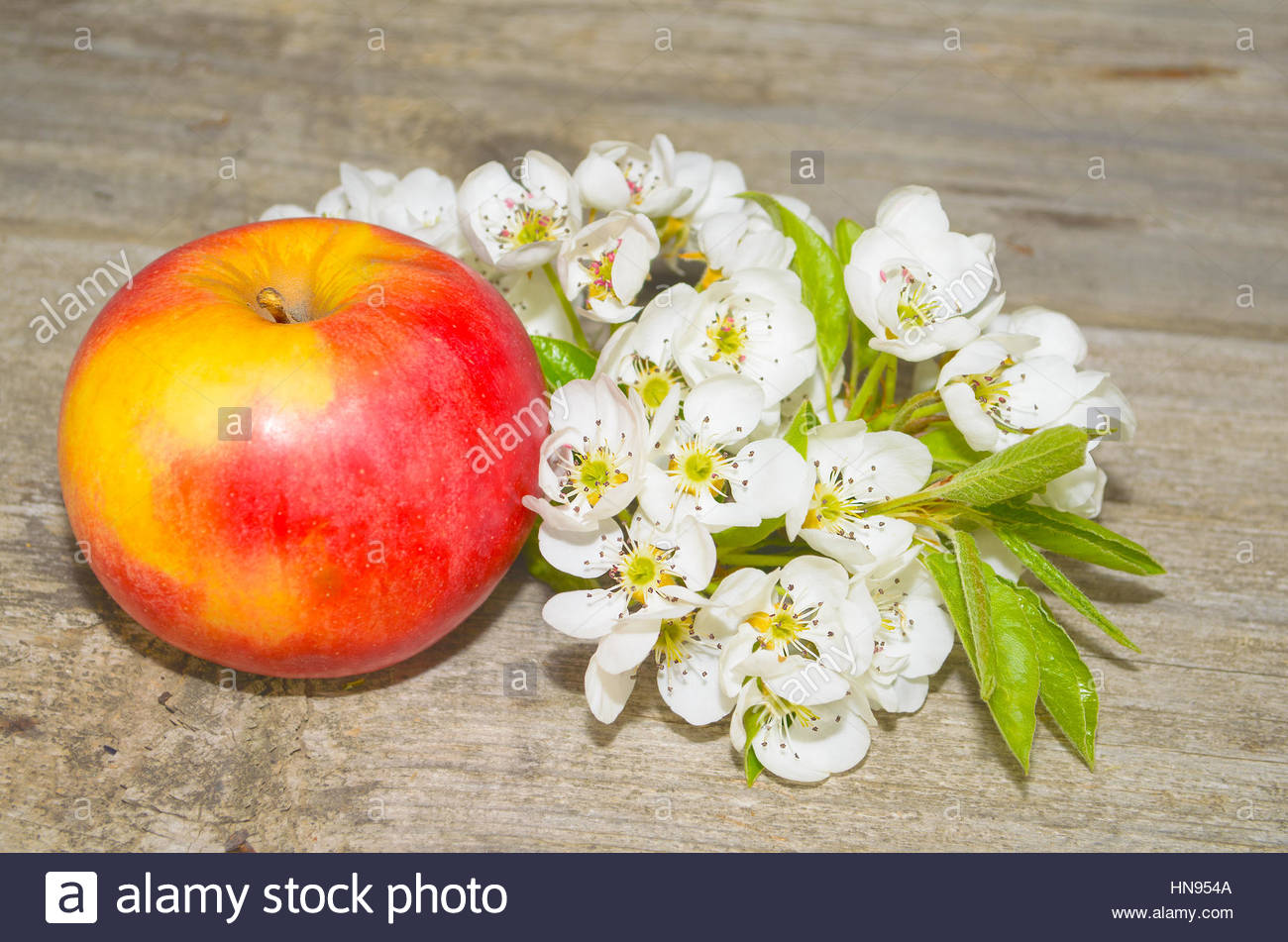 red apple and apple flowers on the old wooden background - Stock Image