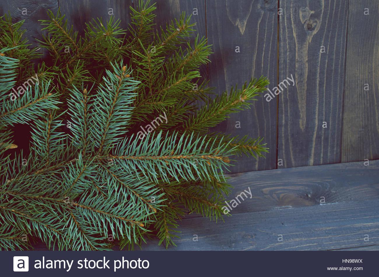 Pine Branches On Dark Wood Background Stock Photo