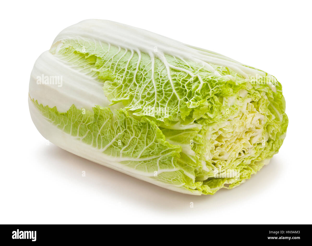 sliced chinese cabbage isolated - Stock Image